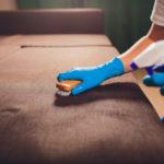 desinfectar hogar